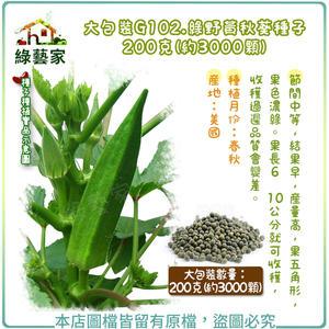 【綠藝家】大包裝G102.綠野黃秋葵種子200克(約3000顆)