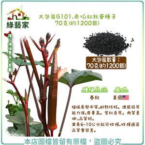 【綠藝家】大包裝G101.赤焰紅秋葵種子70克(約1200顆)