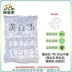 【綠藝家】極白石 1吋 20公斤±5%裝 (漢白玉.特白石.鵝卵石.白卵石)