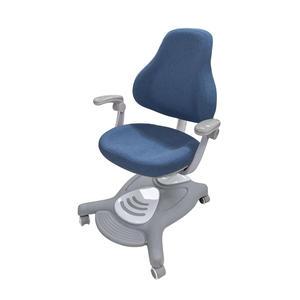 【結賬再折】兒童人體工學椅 可升降成長學習椅 成長椅 成長書桌椅 AU880