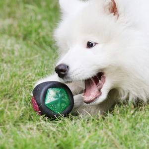 發聲閃光球 狗狗玩具球發聲耐咬磨芽訓練彈力發光球 寵物玩具