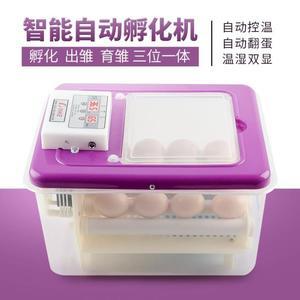 孵化機 中信孵化機全自動家用型水床孵化器小雞小型智慧鳥蛋孵蛋器孵化箱 生活主義