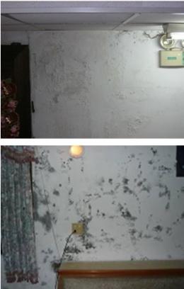 新竹夫婦檔小型壁癌油漆工程行