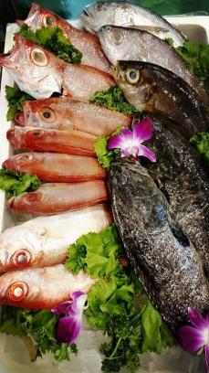 天香砂鍋魚頭活海鮮