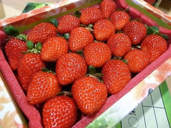 品香草莓園