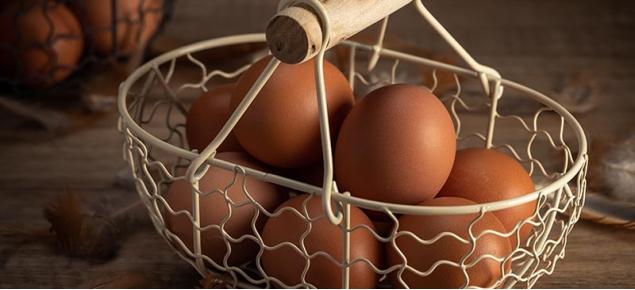 安全蛋品一番農場