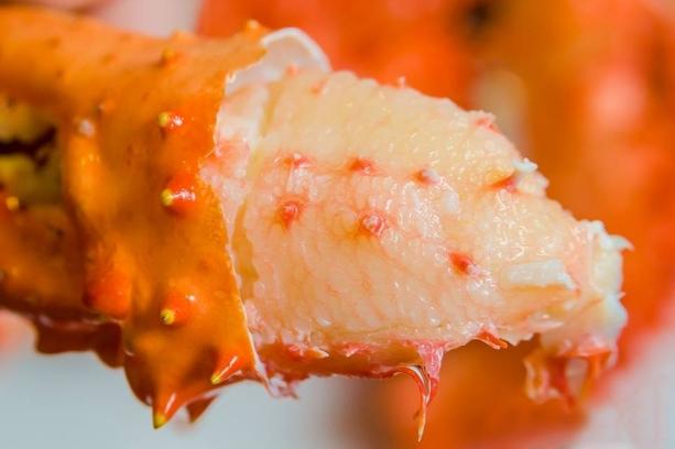 紅蟹將軍帝王蟹火鍋吃到飽