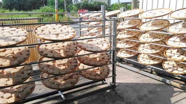 可立安製麵所