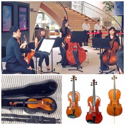 怡鉉林提琴有限公司