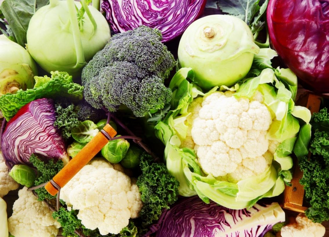 全豐蔬菜批發專送