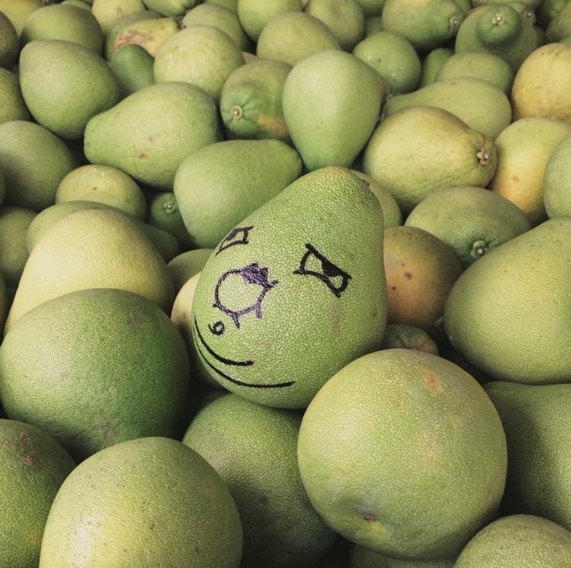順德果園-柚子全台宅配