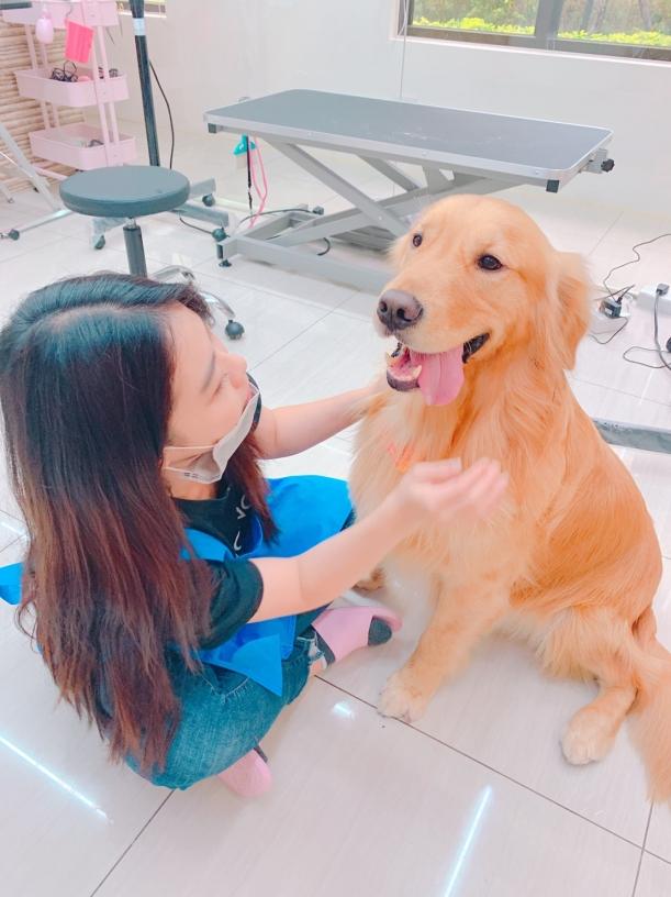 台中寵物旅館推薦-寵曖貓狗生活館