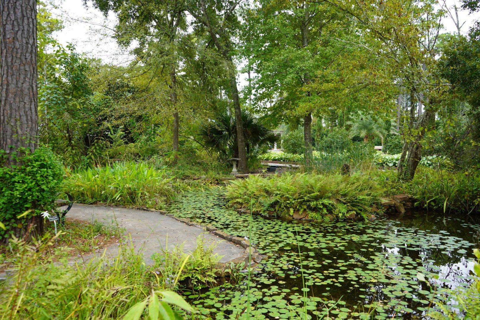 Mercer Arboretum Botanic Gardens In Humble Mercer Arboretum Botanic Gardens 22306 Aldine
