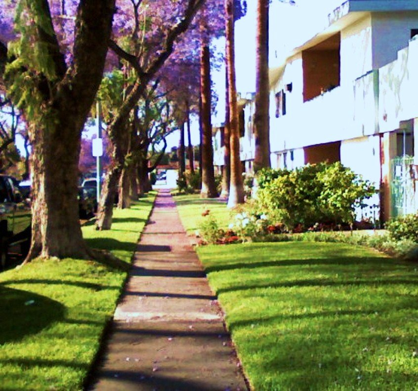 Fullerton Pines Apartments in Fullerton | Fullerton Pines ...