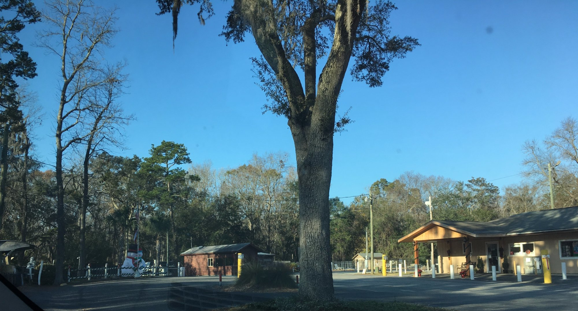 Savannah Oaks Rv Resort In Savannah Savannah Oaks Rv