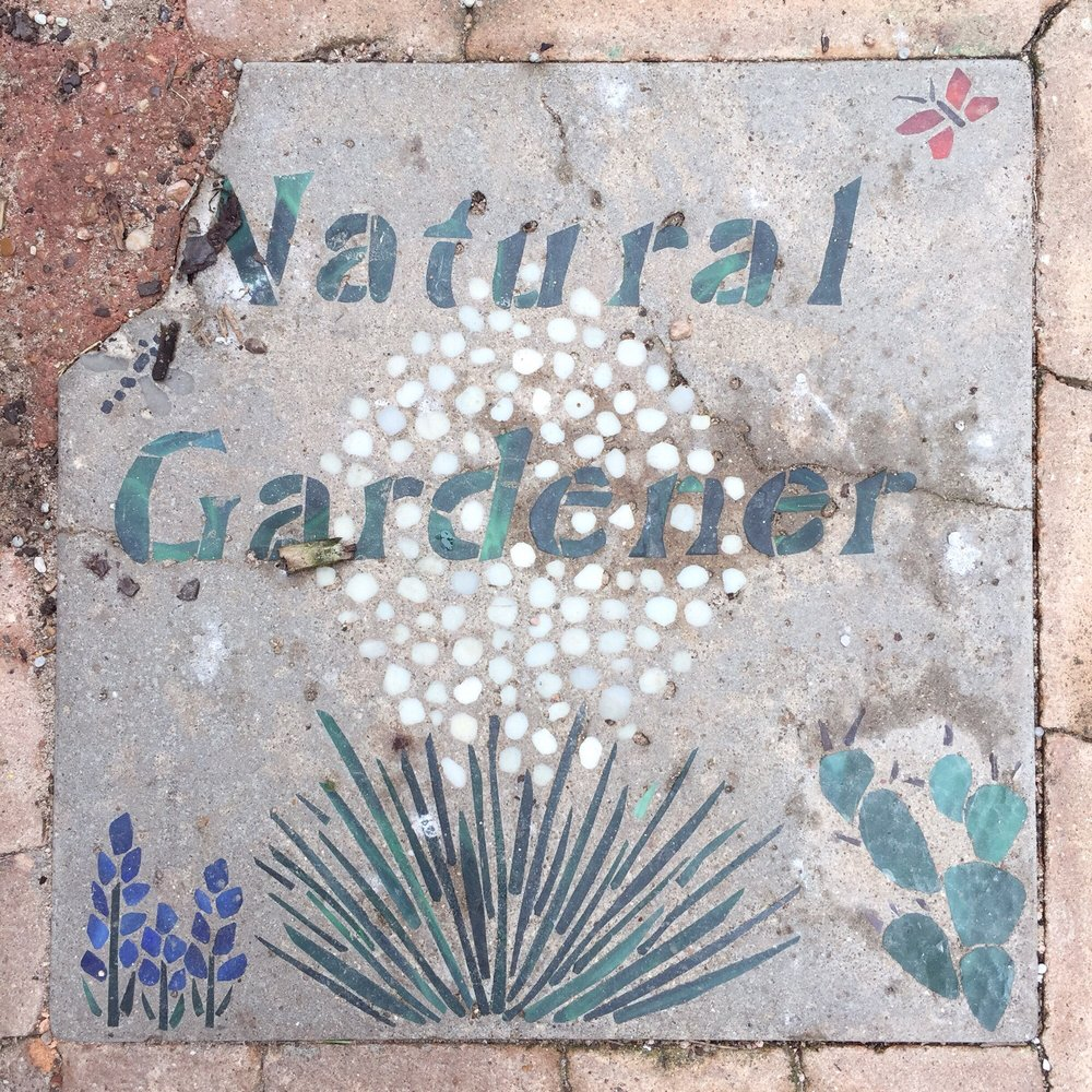 The Natural Gardener In Austin The Natural Gardener 8648 Old Bee Caves Rd Austin Tx 78735