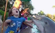 Dolphin Bites Girl At SeaWorld Theme Park