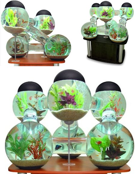 Awesome aquariums 4 cool modern fish tank designs yahoo for Awesome fish tanks