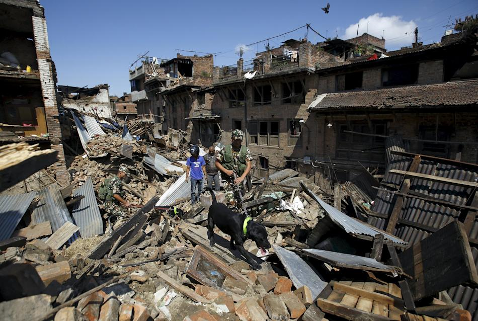 Nepalese army personnel and a sniffer dog search for victims amidst the rubble of collapsed houses after Saturday's earthquake in Bhaktapur, Nepal