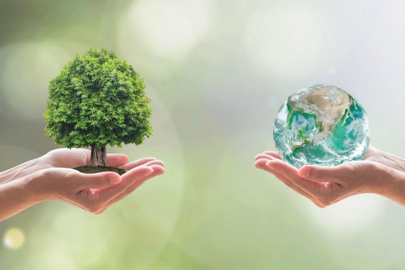 """Troppi incidenti nella """"S"""" della sostenibilità"""