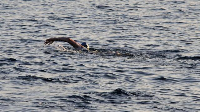 Marathon swimmer abandons Cuba-US journey