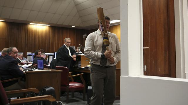 Pistorius case - Pistorius smashed toilet door with bat, expert says