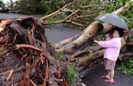 A woman looks at a tree that was blown down when Typhoon Tembin hit Taitung in eastern Taiwan on August 24. Taiwan warned Sunday that Typhoon Tembin was likely to return as people struggled to clear mud-filled homes after the storm pounded the south of the island with the heaviest rains in more than a century