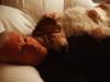 Anderson Cooper Bids Emotional Farewell to His Beloved Dog Molly