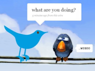 30 Signs Of Social Media Addiction image twitter bird funny1