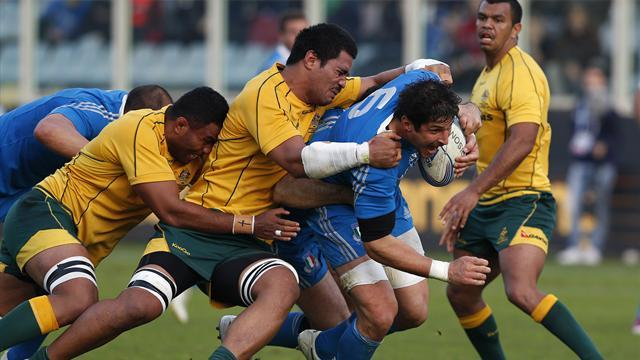 Lions Tour - Wallabies lock Timani ruled out of Lions Tests