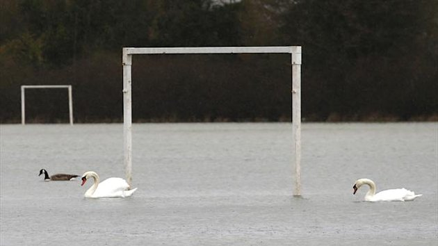 Swans swim over a flooded football pitch near Windsor (Reuters)