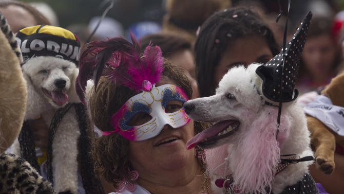 """A woman carries her disguised dog during the """"Blocao"""" dog carnival parade in Rio de Janeiro, Brazil, Sunday, Feb. 3, 2013. According to Rio's tourism office, Rio's street Carnival this year will consist of 492 block parties, attended by an estimated five million Carnival enthusiasts. (AP Photo/Silvia Izquierdo)"""
