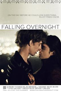 Poster of Falling Overnight