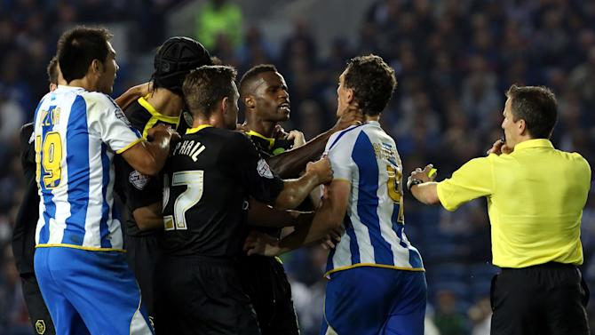 Soccer - Sky Bet Championship - Brighton and Hove Albion v Sheffield Wednesday - Amex Stadium