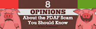 8 Opinions About the PDAF Scam You Should Know