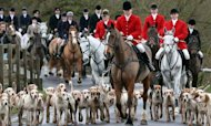 Hunting Ban Repeal Vote 'Is Not Imminent'