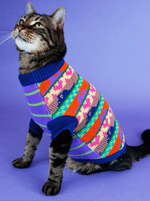 These 26 Cats Wearing Christmas Sweaters Will Put A Smile On Your Face image An Old Lady Christmas Sweater on a Cat
