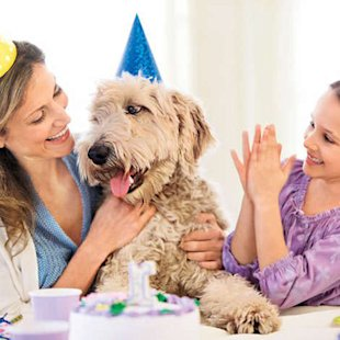 How to Throw a Pet Party