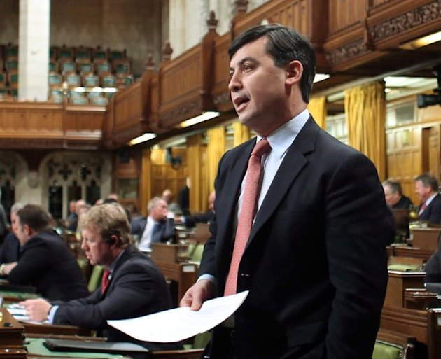 Conservative MP Michael Chong is just one of many MPs pushing for parliamentary reform. THE CANADIAN PRESS/Fred Chartrand
