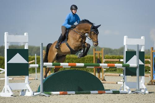 6. Equestrian Events