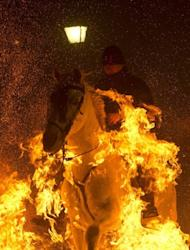 """A horseman jumps over a bonfire at the Saint Anthony festival in Spain's San Bartolome de Pinares on Wednesday. A parade of horses leaped over piles of branches, braving flames that danced meters (yards) high in the """"purification"""" rite held in this town about 100 kilometres (60 miles) northwest of Madrid"""
