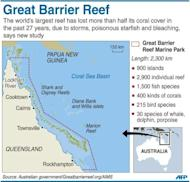 Graphic fact file on the Australia's Great Barrier Reef, which has lost more than half its coral cover in the past 27 years, according to a new study published Tuesday
