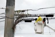 A worker clears a power line, August 25, in Key West, Florida. Tropical Storm Isaac barreled toward Florida and was predicted to become a hurricane on Sunday, forcing a one-day delay to the Republican convention, after leaving two people dead in Haiti