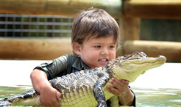 Charlie Parker, aged three, wrestles with a baby alligator (David Caird / Newspix / Rex Features)