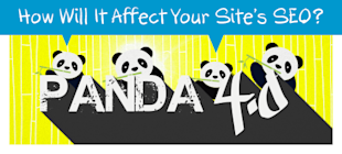 Google Panda 4.0: How Will It Affect Your Sites SEO? image 833293