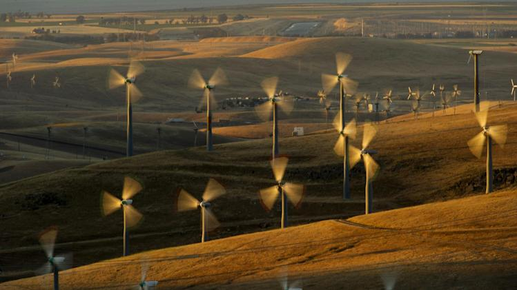 Wind turbines lining the Altamont Pass near Livermore, Calif., generate electricity on Sunday, May 12, 2013. It's the not-so-green secret of the nation's wind-energy boom: Spinning turbines are killing thousands of federally protected birds, including eagles, each year. (AP Photo/Noah Berger)