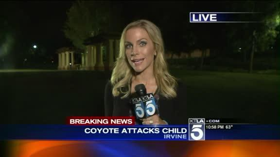 3-Year-Old Girl Attacked by Coyote While Walking With Parents in Irvine