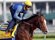 Bodemeister trains on the track in preparation for the 138th Kentucky Derby at Churchill Downs on May 3. Trainer Bob Baffert is counting on talent to overcome a lack of experience when he sends Bodemeister out on Saturday in the Kentucky Derby