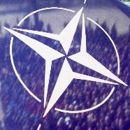 Cutting into NATO's Muscle