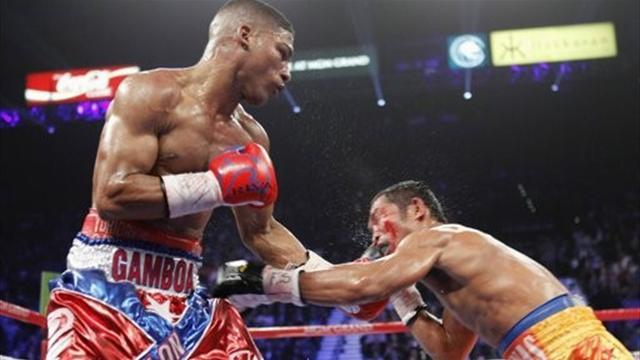 Boxing - Gamboa faces no threat of suspension